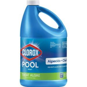 Clorox Pool & Spa Algaecide and Clarifier, 1 gal.