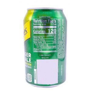 Bebida Schweppes Ginger Ale Soda