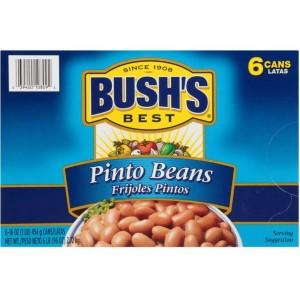 Porotos Pinto Bush's