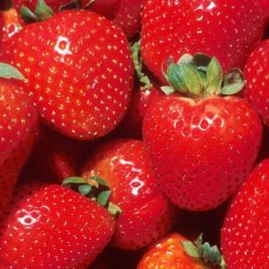 Barra Strawberry Nutri Grain 37gr